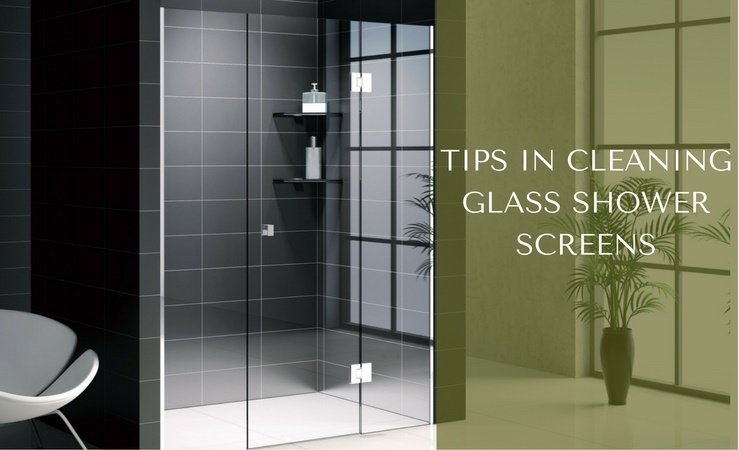 cleaning glass shower screens